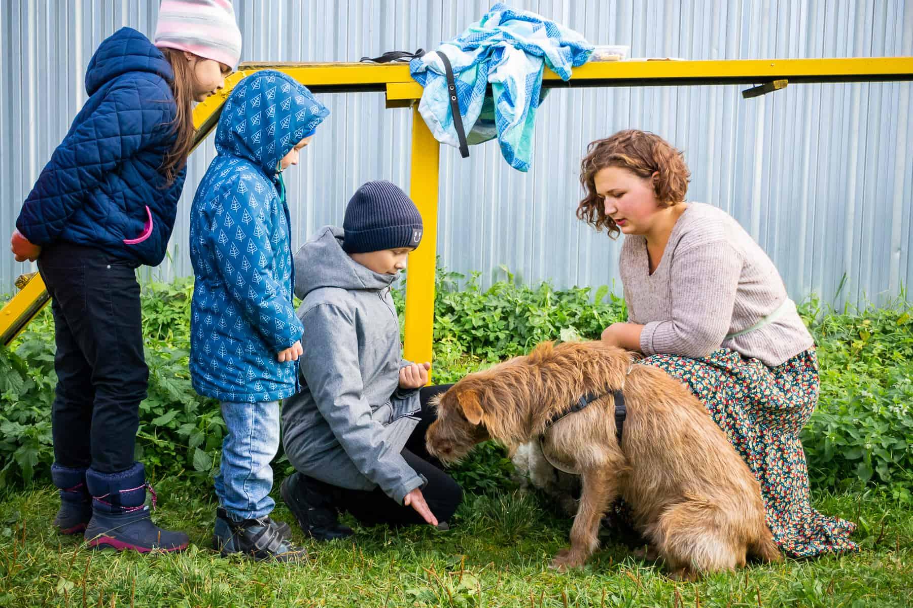 Дети общаются с собакой