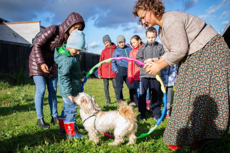 Дрессировка собак для детей и взрослых!